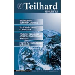 Revue Teilhard de Chardin Aujourd'hui N°47: Article 6