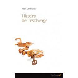 Histoire de l'esclavage les européens, les arabes et les autres de Jean Etévenaux: Sommaire
