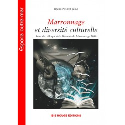 Marronnage et diversité culturelle, sous la direction de Bruno Poucet : Chapitre 11