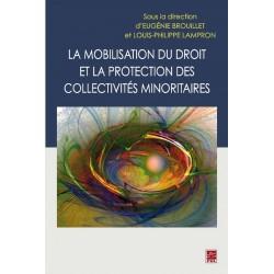La mobilisation du droit et la protection des collectivités minoritaires : Chapitre 7