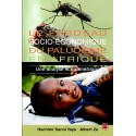 Le fardeau socio-économique du paludisme en Afrique. Une analyse économétrique, de Hachimi Sanni Yaya et Albert Ze Introduction
